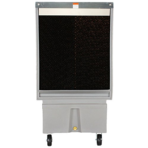 photo Wallpaper of Cool-Space-COOL SPACE CS 16 VD Variable Drive Portable Evaporative Cooler, 18 Inch-Gray