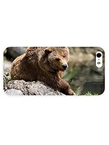 3d Full Wrap Case for iPhone 5/5s Animal Grizzly Bear