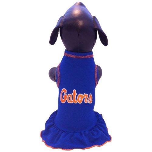 Florida Gators Cheerleader - 3