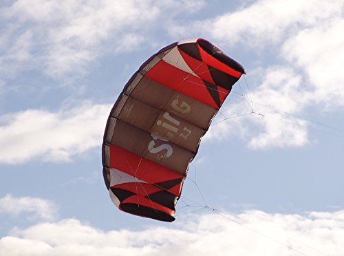 Flexifoil 3.3m2/3.1m Wide Sting 4-line Power Kite with 90 Day! By World Record Power Kite Designer - Safe, Reliable and Durable Power Kiting, Kite Training and Traction Kiting. by FLEXIFOIL (Image #2)