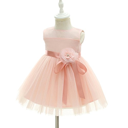 Moon Kitty Baby Girl Dress Christening Baptism Gowns Pink Flower Girl Dress Pink 12M(13-17Months)