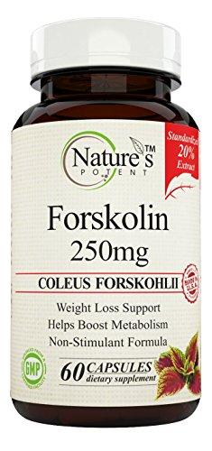 Natures Potent Forskolin Forskohlii Standardized product image