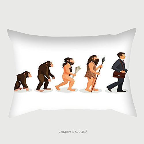 Custom Microfiber Pillowcase Protector From Ape To Man Standing Process Isolated Illustration Of Human Evolution From Ancient Times Till 537280867 Pillow Case Covers Decorative Ancient Mali Futon Cover