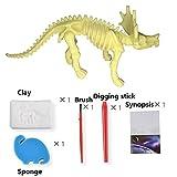 Minibaby Children s Fun Toys Archeological Excavations Dinosaur Skeleton Fossil Mini Tool Set (Monoclonius)