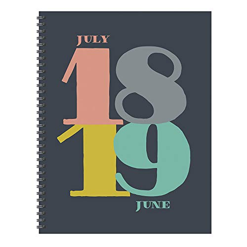 TF Publishing 19-9782A July 2018 - June 2019 Pop Art Large Weekly Monthly Planner, 9 x 11