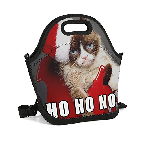 SHIWERJHC Grumpy Cat Ho Go No Neoprene Lunch Tote Unisex Insulated Thermal Reusable Lunch Bag Box for Women Men Child School Work Outside Picnic