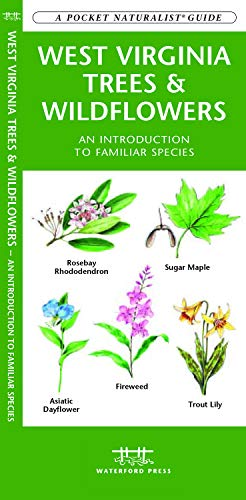 West Virginia Trees & Wildflowers: An Introduction to Familiar Species (Wildlife and Nature Identification)