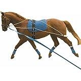 Kincade Lunging Training System based on PESSOA Training Aid 1 Size by Kincade