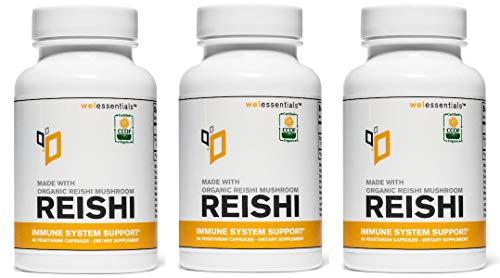 Cheap Organic Reishi Mushroom Extract (500mg Per Serving) (Vegetarian Capsules) (3 Bottles)