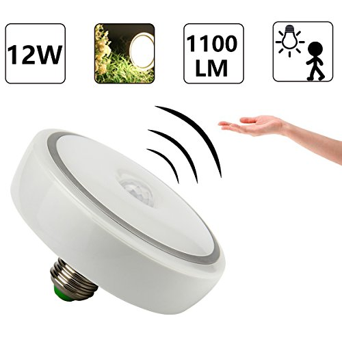 Led Ceiling Light With Motion Sensor in Florida - 8