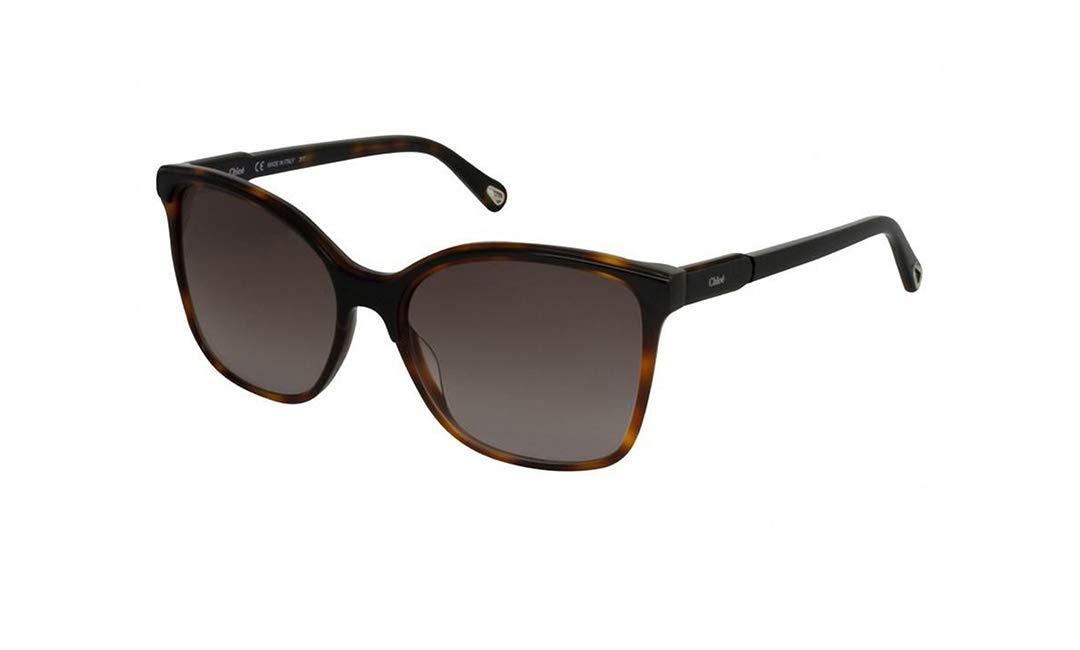 Gafas de Sol Chloé CE734S BLACK HAVANA/BROWN SHADED mujer ...