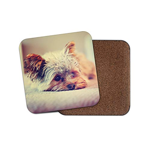 (Yorkshire Terrier Coaster - Yorkie Dog Puppy Cute Pet Animals Love Gift #15621)