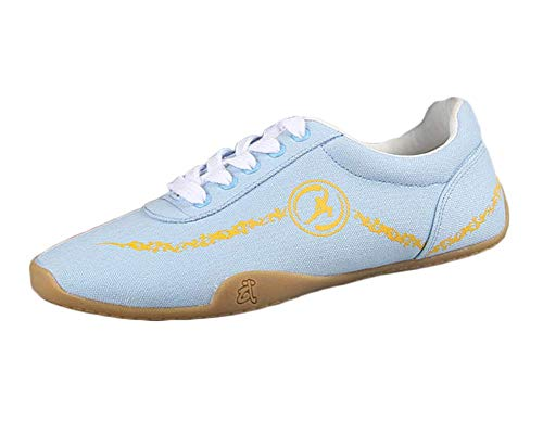 Unisex Adults Breathable Comfort Chinese Tai-Chi Wu Shu Kung Fu Shoes Basic Style for Daily Training Morning Exercises Blue 35