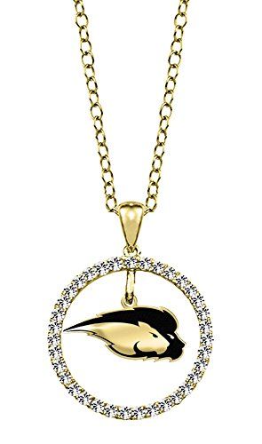 Hofstra University Pride 14kt Yellow Gold and Diamond Circle Charm Pendant (Pride Pendant 14kt Gold Jewelry)