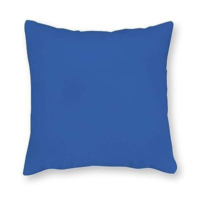 daoyiqi Capri Blue Pillow, Blue Indoor/Outdoor Pillows, Outdoor Lumbar Pillow, Solid Blue Sunbrella Pillow, Outdoor Patio Pillow 18 x 18 Inch: Home & Kitchen