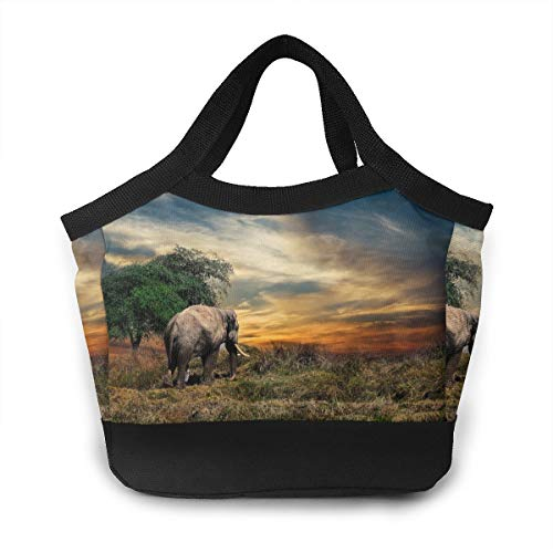 FANTASY SPACE African Elephant Sunrise Lunchbox Food Container Container for Kids Boys Girls Toddlers, Work School Picnic BBQ Lunch Organizer Premium Totebag to Keep Food Hot/Cold