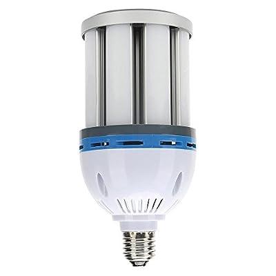 LVJING LED bulb