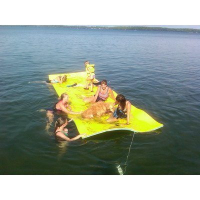Bullfrog Floating Foam Pad by Aqua Lily Pad