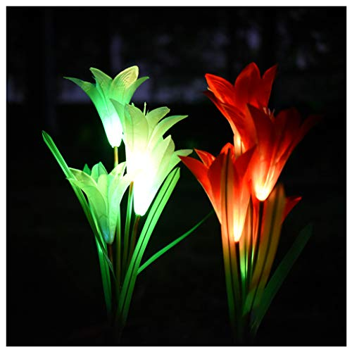 Mains Powered Led Garden Lights in US - 4