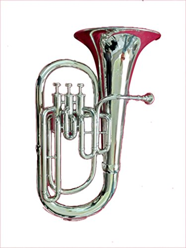 Surbhi Music 3 Valve Siver Chrome Euphonium Bb Pitch Eupho Brass Musical Instrument With Free Case Box & Mouth Pc. by Surbhi Music