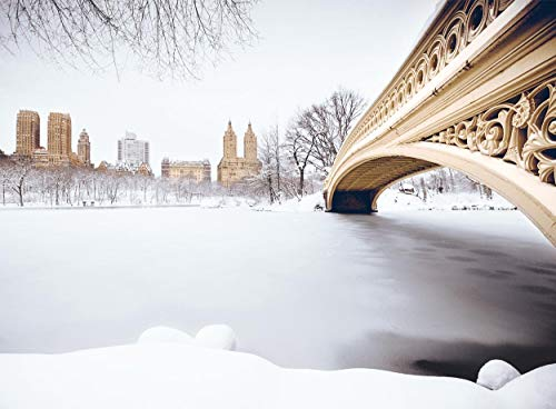 Central Park Arch Bridge in Snow, New York City Christmas Boxed Cards Set of 12 Holiday Cards and 12 Envelopes. Made in ()