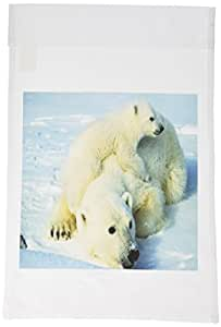 3dRose fl_98619_1 Playful Polar Bear N Her Mom Garden Flag, 12 by 18-Inch