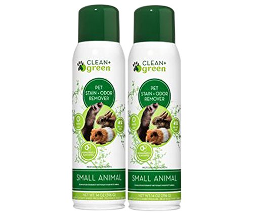 Professional Strength Cleaner, Stain Remover, Deodorizer, Odor Eliminator for Small Animals, 14 Ounce (Green Small Animal)