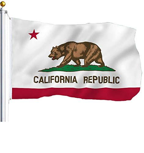 ca bear flag - 6