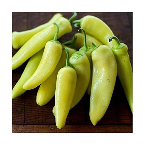 Banana Pepper Recipes - David's Garden Seeds Pepper Specialty Hungarian Sweet Banana SL6332 (Yellow) 50 Non-GMO, Organic Seeds