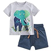 Fiream Baby Boy's Cotton Cute Short Sleeve Clothing Set(Set1,2T)