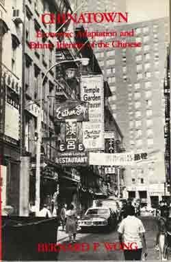 Chinatown, Economic Adaptation and Ethnic Identity of the Chinese (Case Studies in Cultural Anthropology)