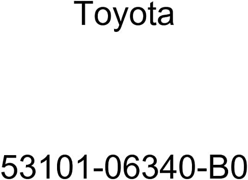 Toyota 53100-02100-B1 Radiator Grille Sub Assembly