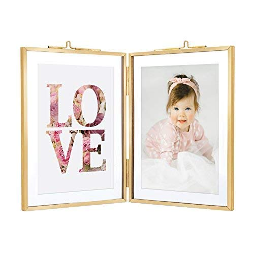 Rising Star Double 3.5x5 Folding Picture Frames, Gold Metal Pressed Glass Photo Frame Brass (Plant Vintage Postcard)