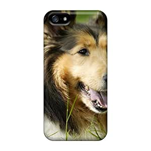 Tpu Fashionable Design A Beautiful Collie Rugged Case Cover For Iphone 5/5s New