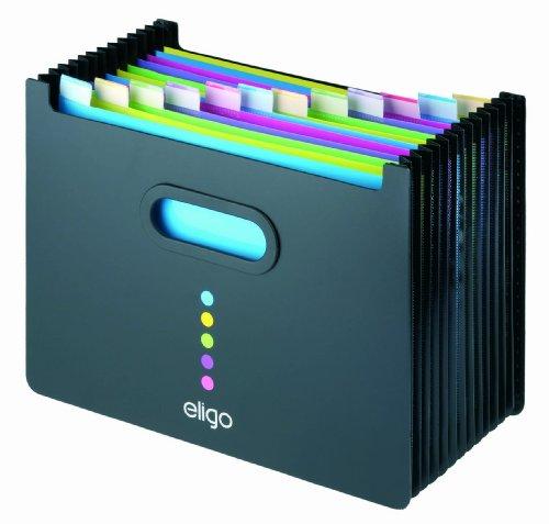 Eligo Archivbox (13 Fächer, DIN A4, Querformat)