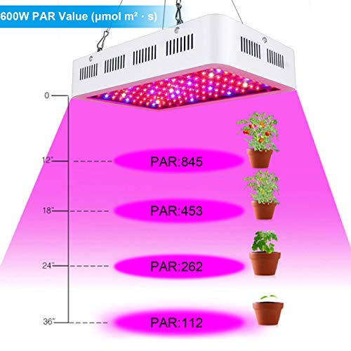 fam famgizmo 600W LED Plant Grow Light,Double Chips Full Spectrum Plant  Light for Indoor Plants Veg and Flower,with Thermometer Humidity  Monitor,with