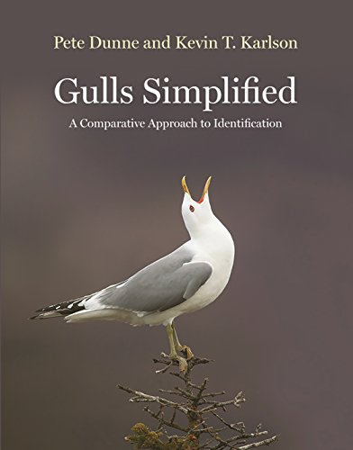 Gulls Simplified: A Comparative Approach to Identification by [Dunne, Pete, Karlson, Kevin]