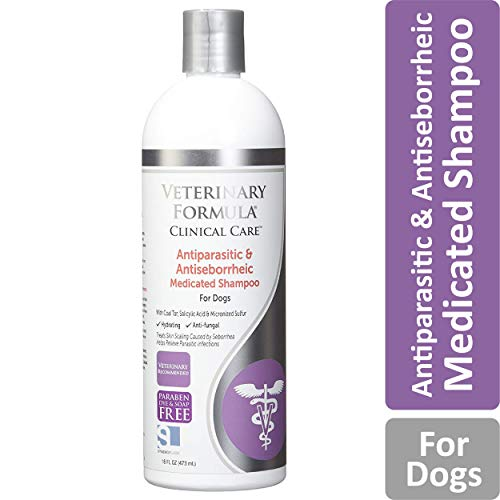 Veterinary Formula Clinical Care Antiparasitic and Antiseborrheic Medicated Shampoo for Dogs - Veterinary Recommended, Fast-Acting Shampoo For Mange, Parasitic Infections, Seborrhea, and Fungal and Bacterial Skin Infections in Dogs (16 oz bottle) (Flea Medicine For Cats With Sensitive Skin)