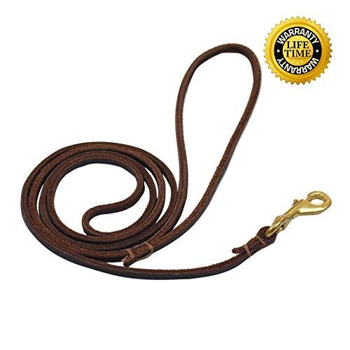 Small 6' Dog Leash - 9