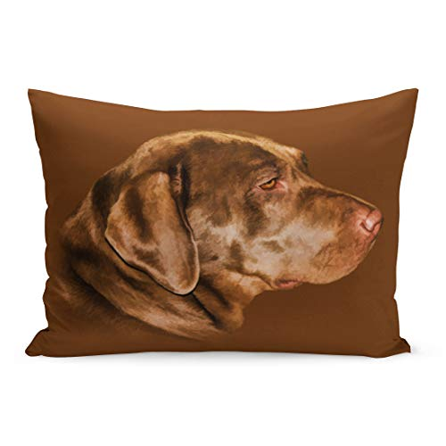 Aikul Throw Pillow Covers Brown Pets Labrador Retriever for sale  Delivered anywhere in Canada