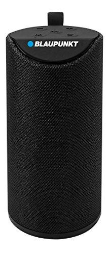Blaupunkt BP1253 Bluetooth Wireless Speaker w/33 feet range, 3 Hours Battery Life, Micro SD, USB, and Aux Inputs