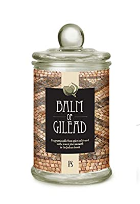 Balm of Gilead Fragrance Candle Infused with Natural Oil, 10 Ounce
