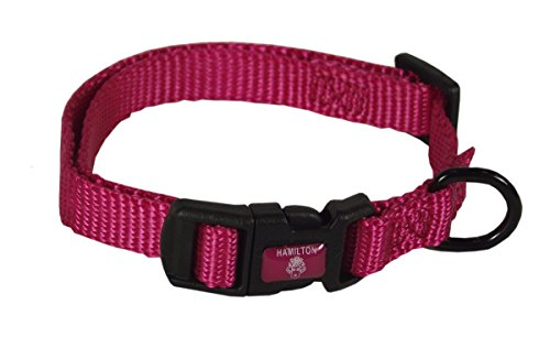 Nylon Dog Collar (Nylon Dog Collar Raspberry)