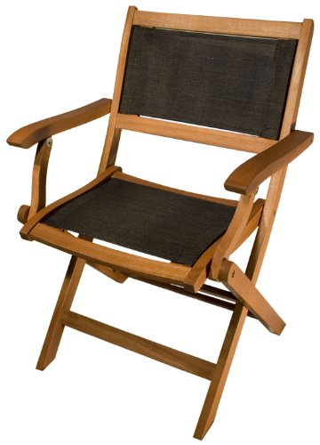 Arboria 2-Pack Sea Breeze Folding Arm Chair