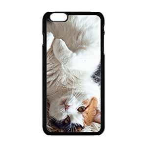 Lazy Cat Black Phone Case for iPhone 6 Case