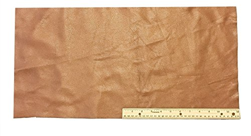 Brown Leather Fringe - Upholstery Leather Piece Cowhide Light Brown Light Weight 12 x 24 inches 2 SF
