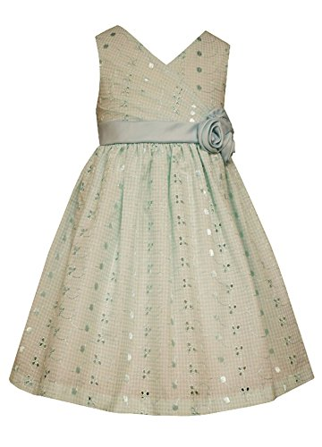 Girls Eyelet Dress, Mint (4T) ()