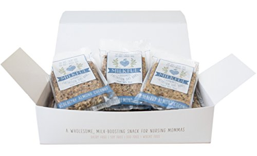 MILKFUL Lactation Bars, wholesome & delicious snack to support breast milk supply. 6 Bars. (Dairy Free, Egg Free, Soy Free, Wheat Free) (Blueberry Almond Coconut)