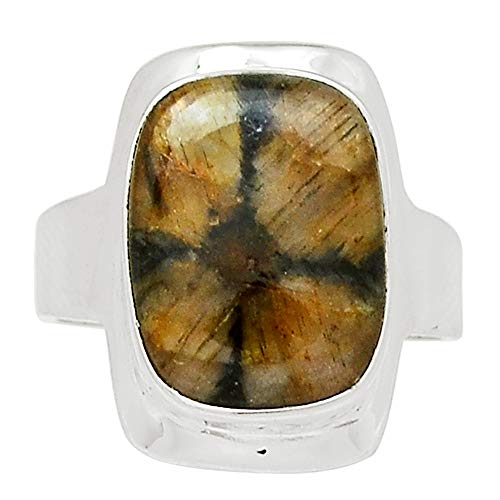 Xtremegems Chiastolite (Cross Stone) 925 Sterling Silver Ring Jewelry Size 9 27545R