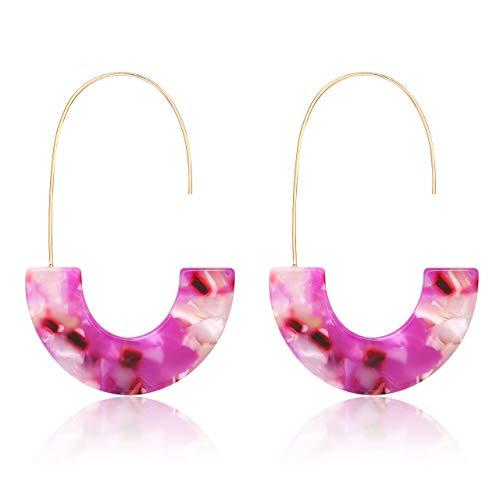 - MOLOCH Acrylic Earrings Statement Tortoise Hoop Earrings Resin Wire Drop Dangle Earrings Fashion Jewelry for Women (Pink)